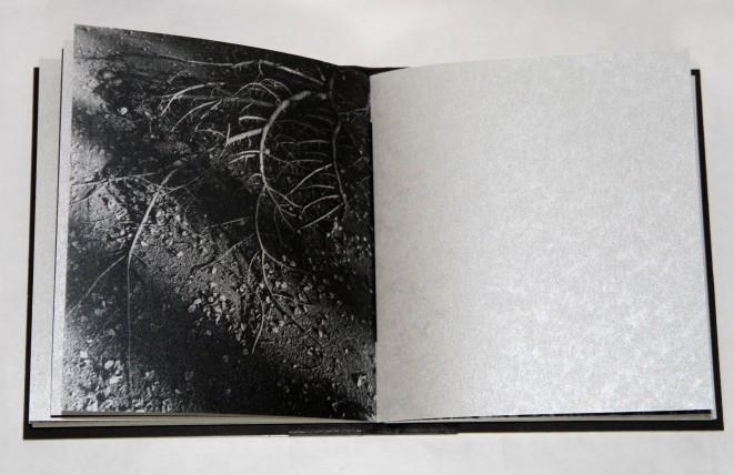 03_book[2]